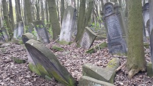 Headstones amidst the forest at Okopowa cemetery