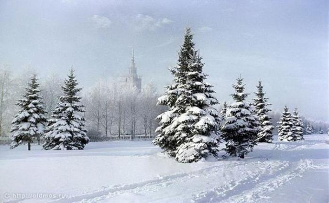 Moscow State University Construction